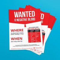 maimonides graphic design design flyer blooddrive designer studio