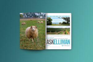 Northforker Magazine Design